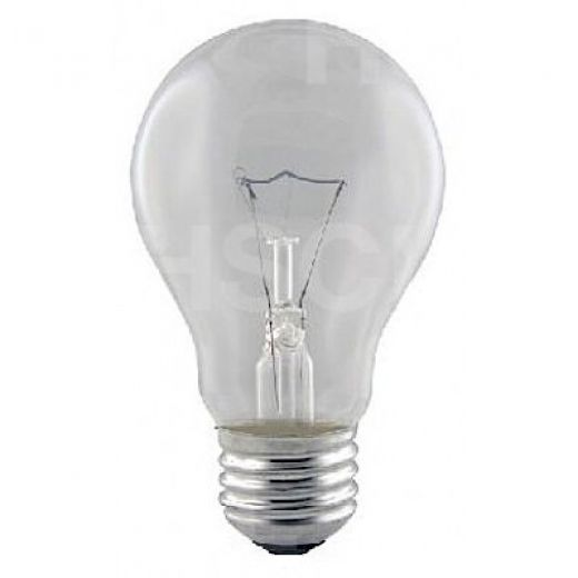 60 watt ES-E27 Clear Rough Service GLS Light Bulb