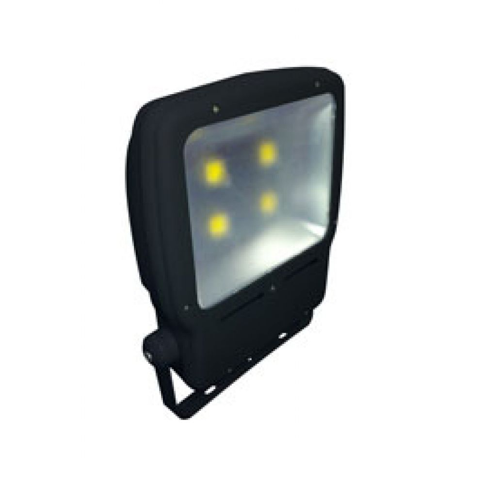robus rp200ledf 04 200 watt black led olympic flood light. Black Bedroom Furniture Sets. Home Design Ideas