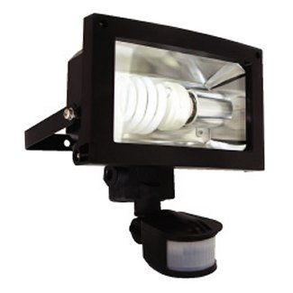 Eterna FL124BPIR PIR Controlled Low Energy Outdoor Floodlight