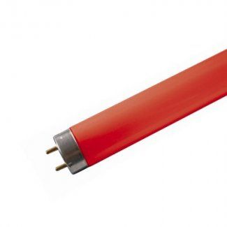 18 watt 2ft Red T8 Fluorescent Tube