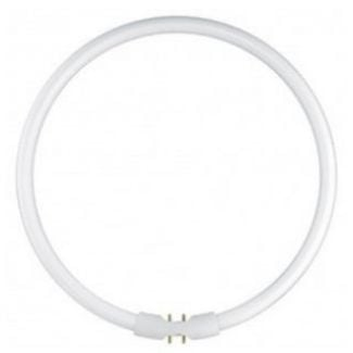 60 watt Warm White T5 Circular Fluorescent Tube