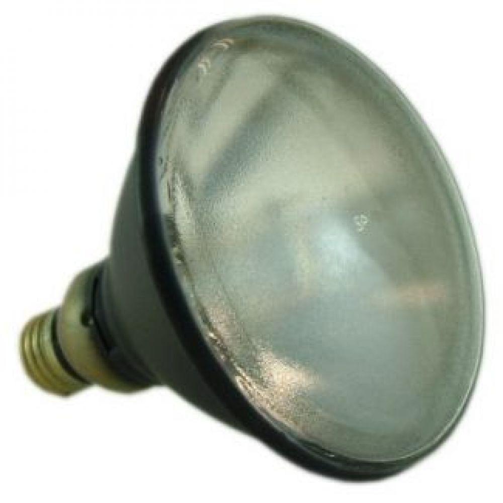 Sylvania H44GS-100M 100 watt Par38 Mercury Light Bulb - 100w Mercury Vapour